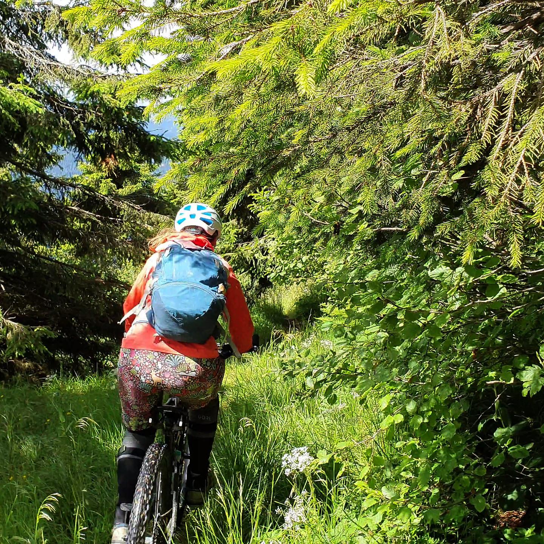 crostis-trail11.jpg
