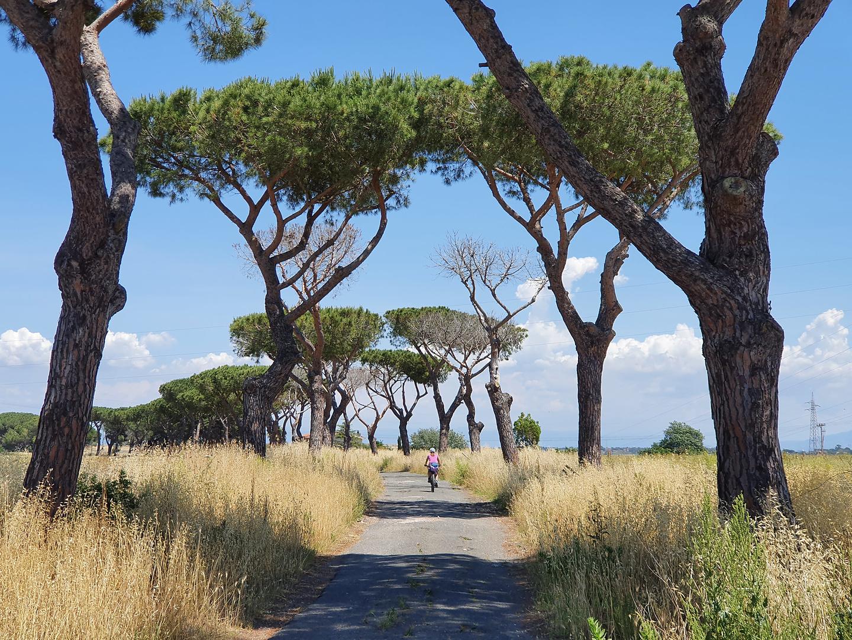 rome-cycleway2.jpg