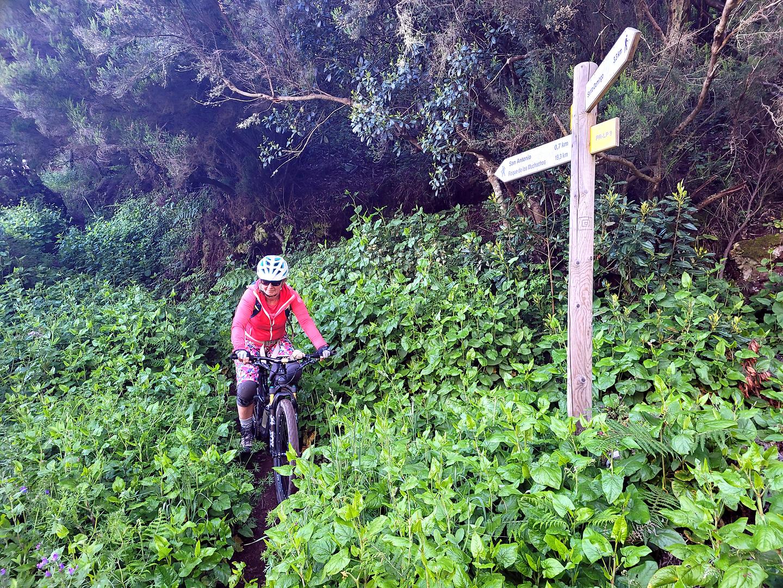huerta-trail3.jpg