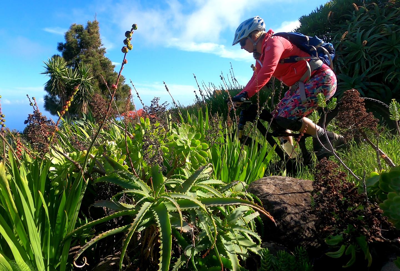 huerta-trail6.jpg