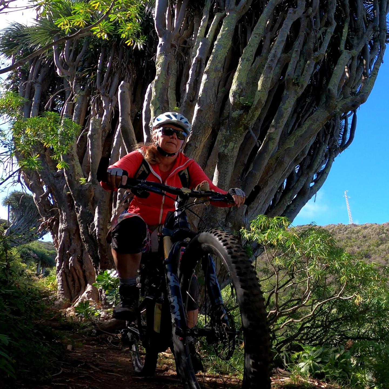 huerta-trail9.jpg