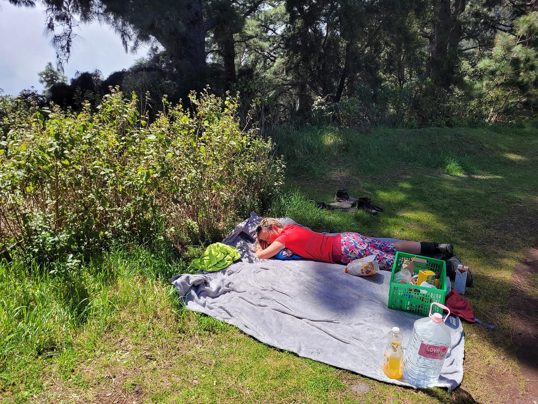 prlp4-picknick.jpg