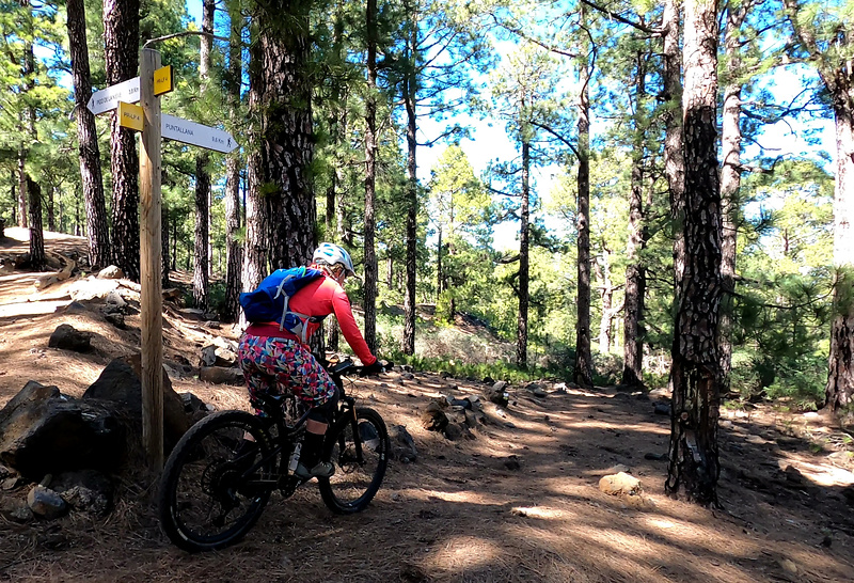 prlp4-trail1.jpg