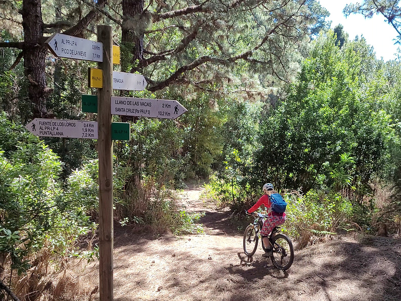 prlp41-trail1.jpg