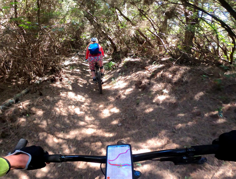 prlp41-trail4.jpg