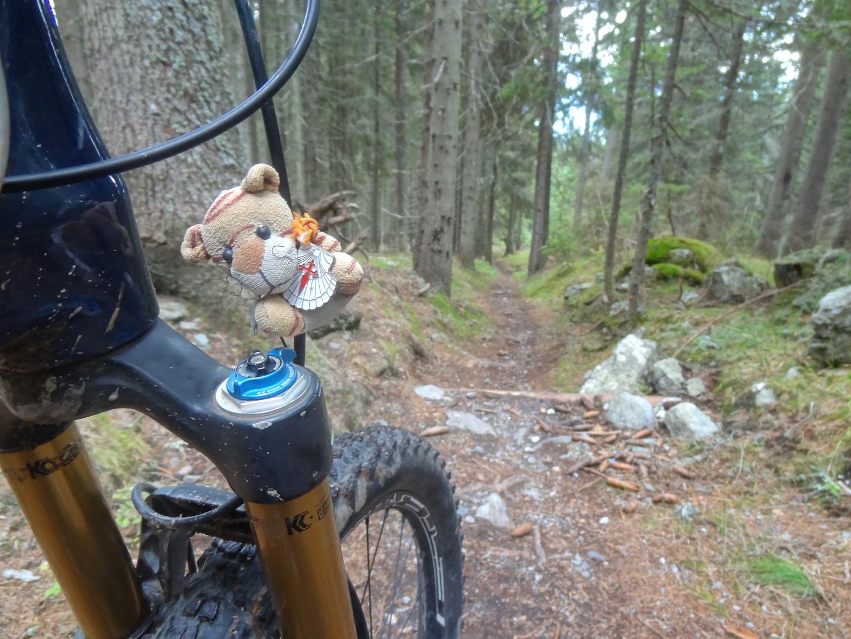 spina-trail4.jpg