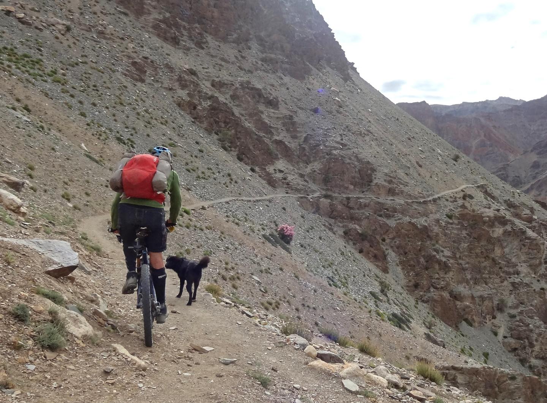 phuktal-trail1.jpg