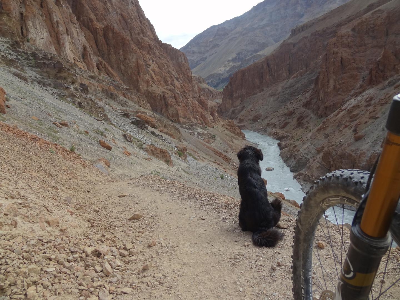 phuktal-trail6.jpg