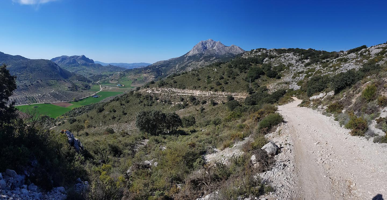 alfarnate-road2.jpg