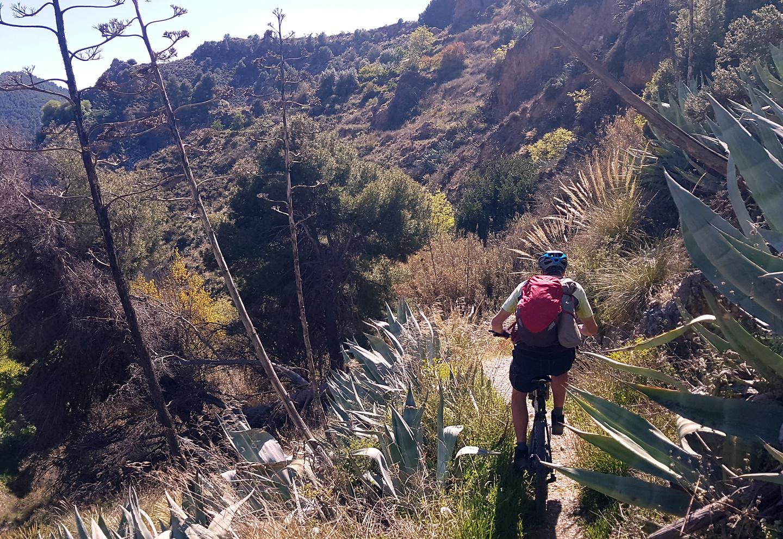 durcal-trail4.jpg