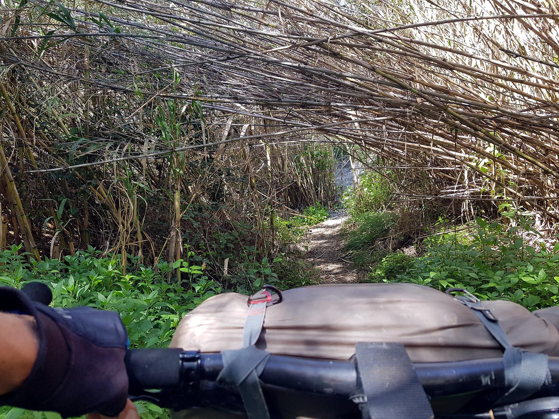 durcal-trail7.jpg