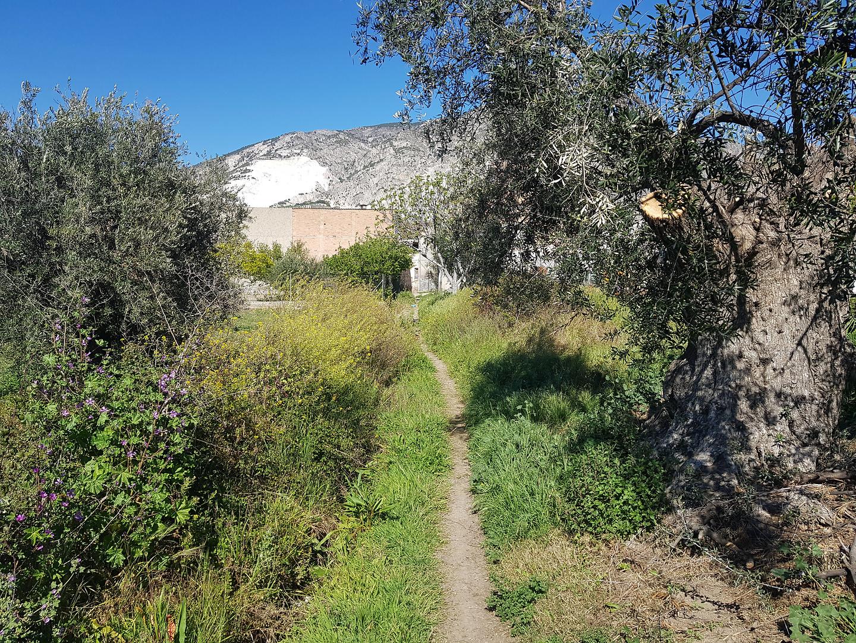 durcal-trail8.jpg