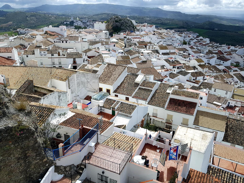 olvera-roofs.jpg