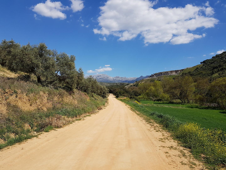 rosario-road.jpg