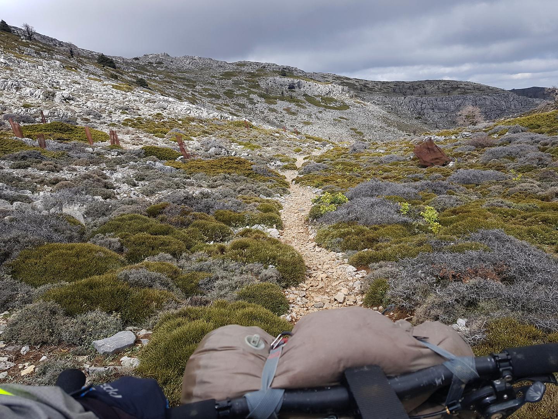 sierranieves-trail4.jpg
