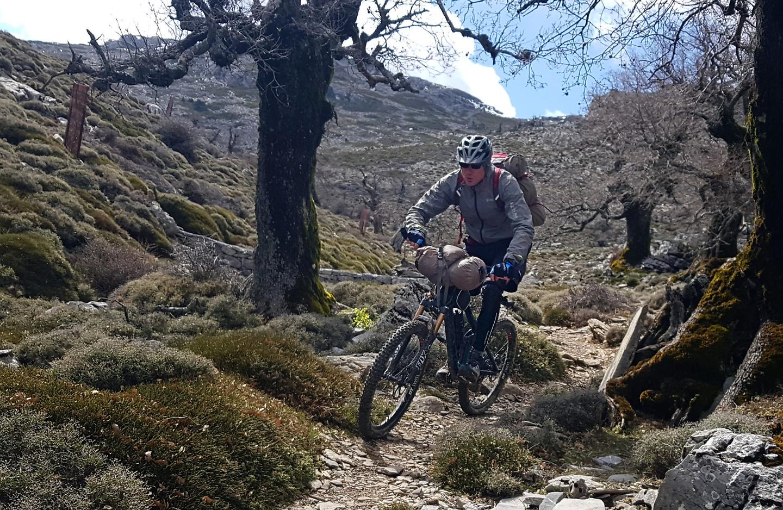 sierranieves-trail5.jpg