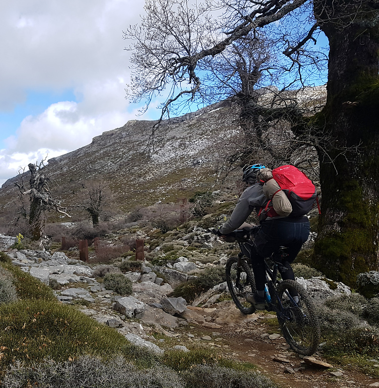 sierranieves-trail6.jpg