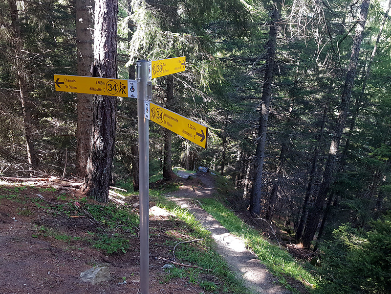 cheneil-trail1.jpg